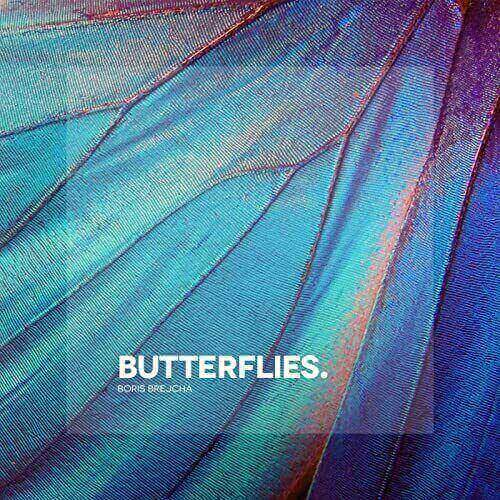 دانلود آهنگ Boris Brejcha – Butterflies Original Mix