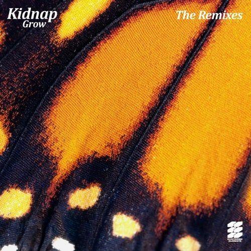 دانلود آهنگ Kidnap Kid Ft. Leo Stannard - Moments CamelPhat Remix
