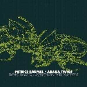 دانلود آهنگ Adana Twins, Patrice Baumel - Roar Adana Twins Remix