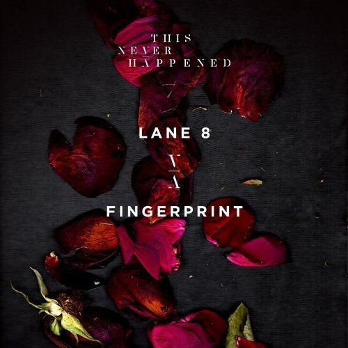 دانلود آهنگ Lane 8  – Fingerprin