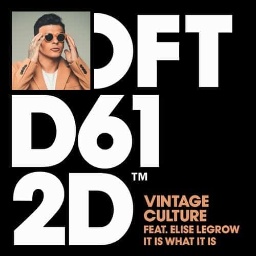 دانلود آهنگ Vintage Culture feat. Elise LeGrow - It Is What It Is