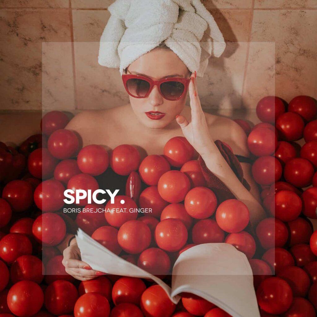 دانلود آهنگ Boris Brejcha Feat. Ginger - Spicy